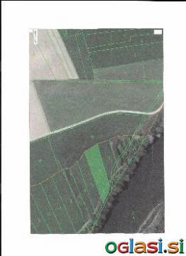 Prodam: MB - Podravska - Miklavž na Dravskem Polju, zemljišče - kmetijsko zemljišče