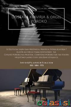Dostava Klavirja, Orgel na poroko, Koncert