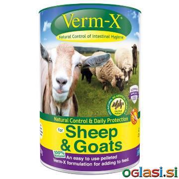 Naravni antiparazitik za drobnico Verm-x