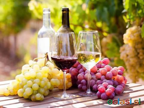 Prodaja domačega vina