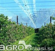 Protitočna zaščita sadovnjakov in vinogradov