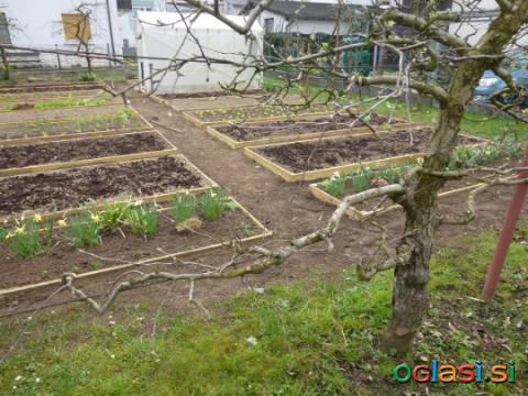 Vrtna zemlja