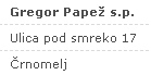 Gregor Papež s.p.